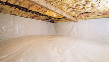 Wet Crawl Space in the Basement